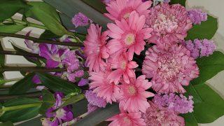 今週のお花✿